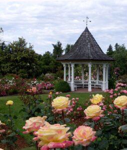Top 8 wedding venues in Dallas Texas by Southwest Originals 505-363-7150